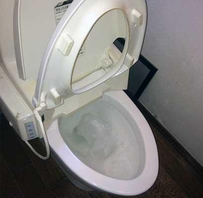 トイレットペーパーや便が流れずに残る