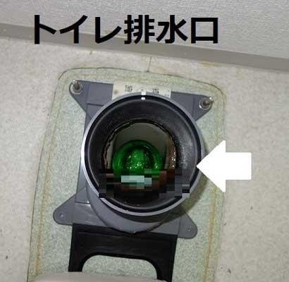トイレ排水口の中に緑色の芳香剤がつまっている