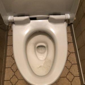 尿取りパッドがつまったトイレ