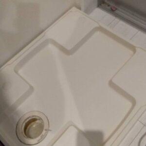 洗濯排水口分解掃除
