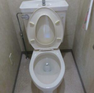 原因不明のトイレつまり