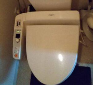 ブルーレットがつまったトイレ