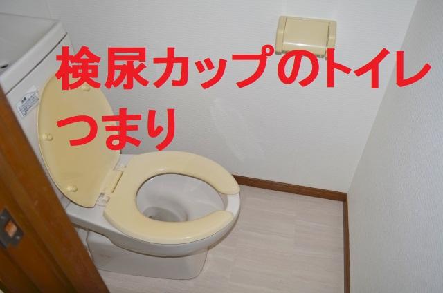 検尿カップアイキャッチ